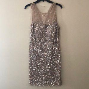 Nightway Blush Sequin Dress